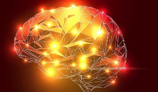 La neurociencia nos permite hoy en día comprender el papel tan importante del aprendizaje continuo en nuestras vidas